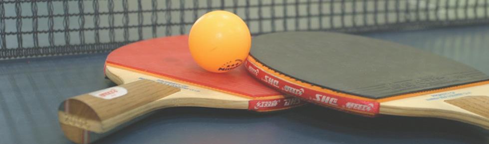 formation d'entraineur fédéral de tennis de table en occitanie