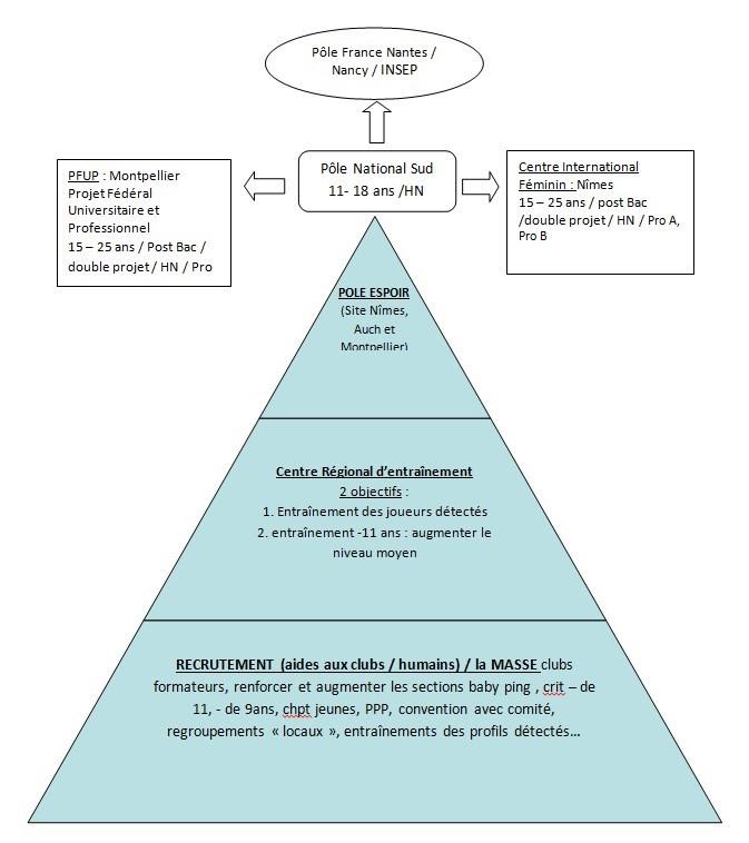 graphique de présentation du plan de performance régional de ping pong d'occitanie